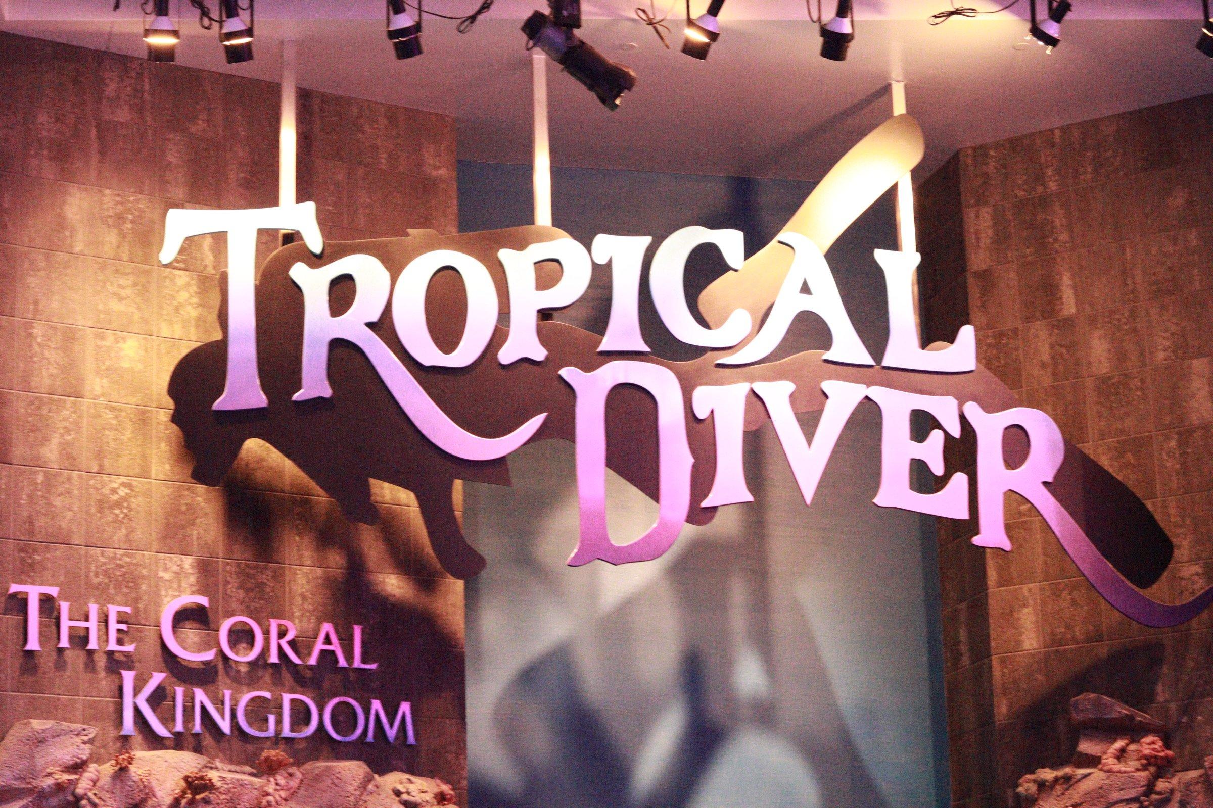 Tropical Diver Georgia Aquarium